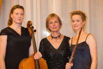 Sirius-Trio klein